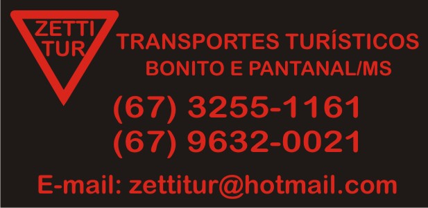 Zettitur - transportes turísticos