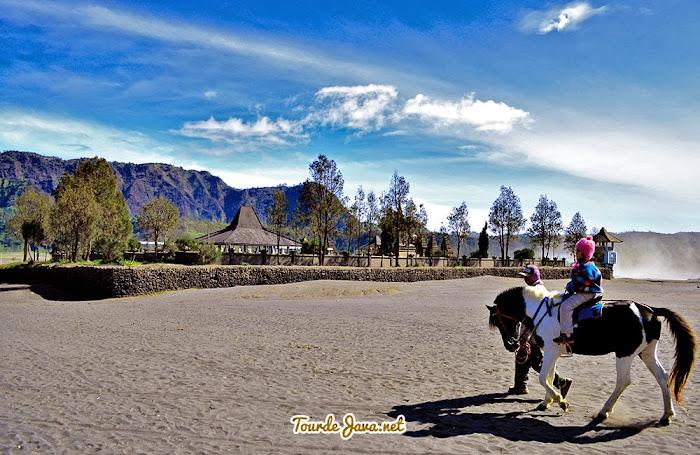 tersedia kuda tumpangan di Bromo