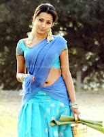 Trisha, hot, saree, navel, show