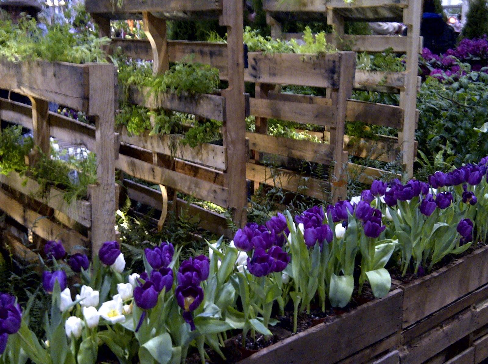 3 amazing diy pallet garden ideas pallets designs for Garden design ideas diy