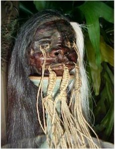 Images Stories Remote Http  Www.dailyarticle.gr Wp Content Uploads 2011 08 Real Shrunken Heads 231.355932203x300