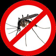 membuat Alat Pengusir Nyamuk, Lalat, Tikus, Semut, Kecoak