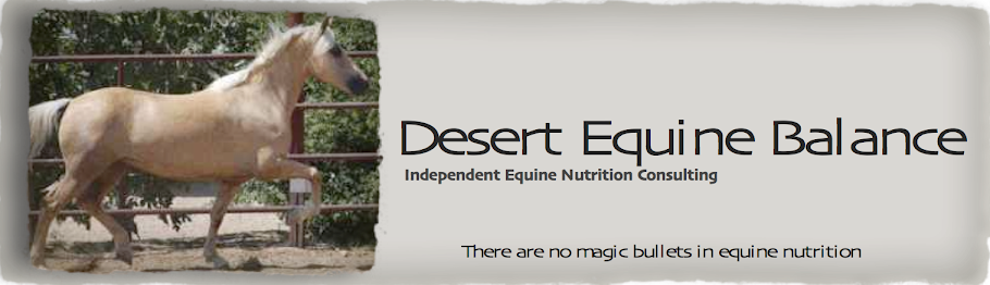 Desert Equine Balance