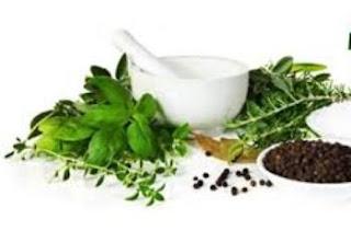 5 Obat Herbal Untuk Mencegah Kanker