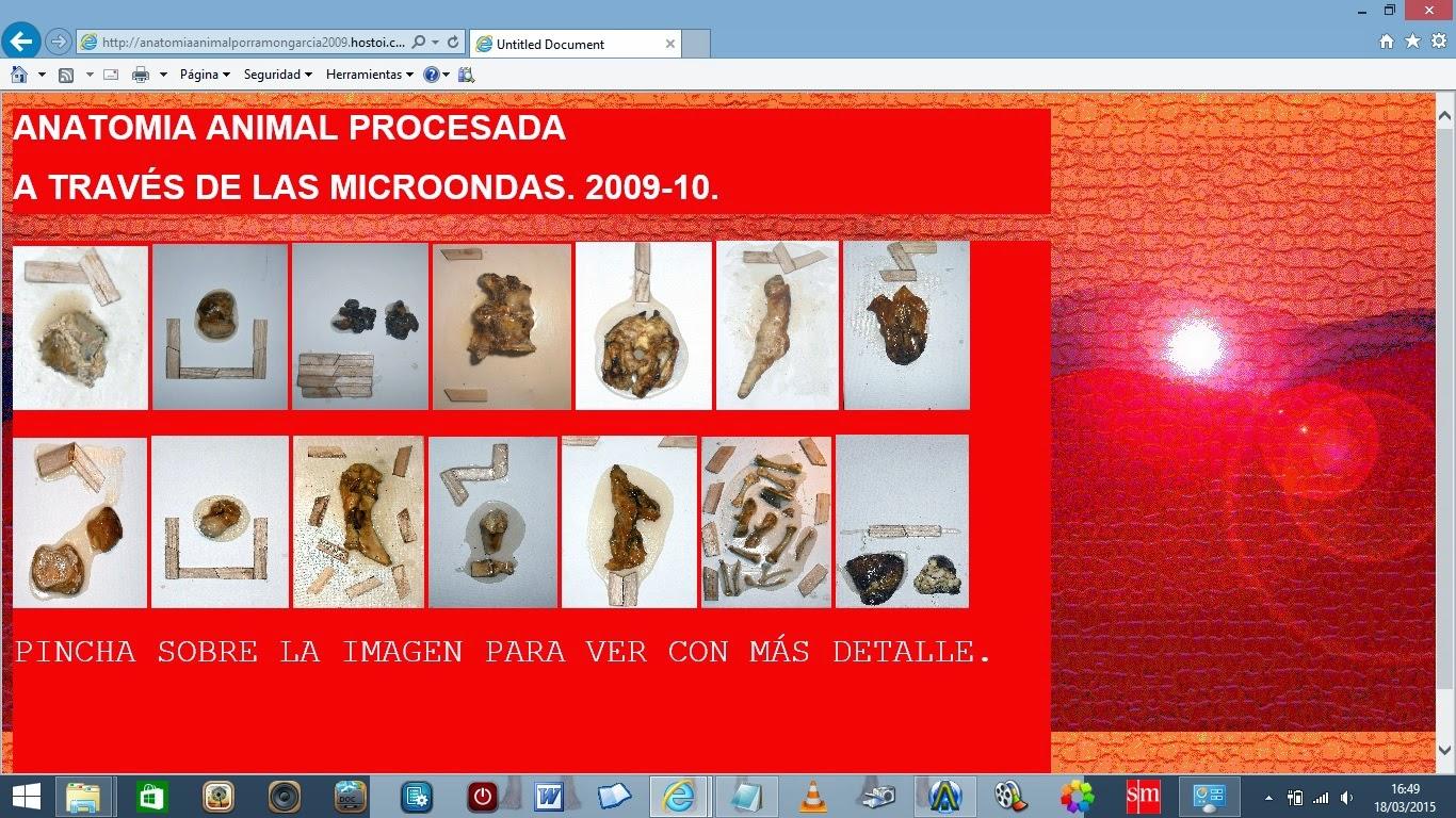RAMÓN GARCIA: ANATOMIA ANIMAL PROCESADA A TRAVÉS DE LAS MICROONDAS.