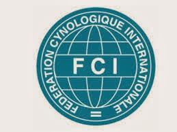 WEB FCI