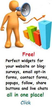 Widgets to promote blog or website