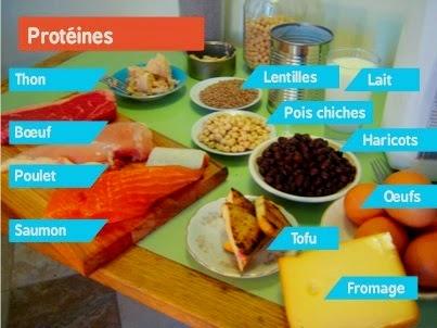 proteines viande aliments