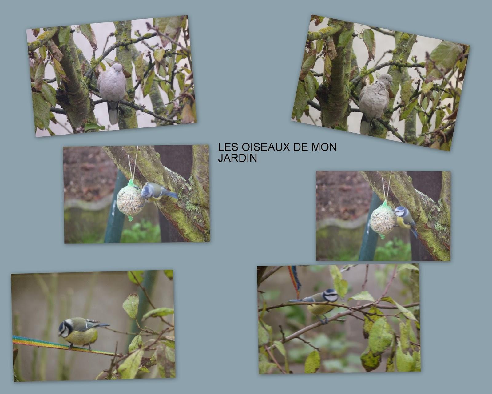 Fait main divers photos montages - Deco jardin fait main caen ...