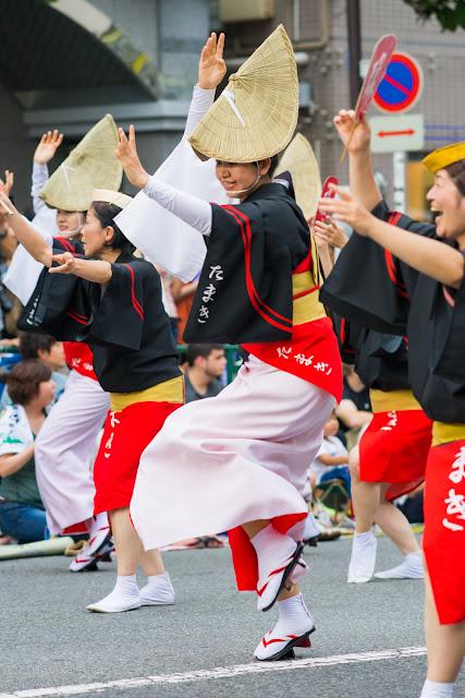 高円寺阿波踊り 阿波踊り連 たまきの女踊り