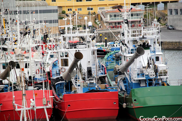 Antxua Eguna - Dia de la anchoa - Getaria - 2011