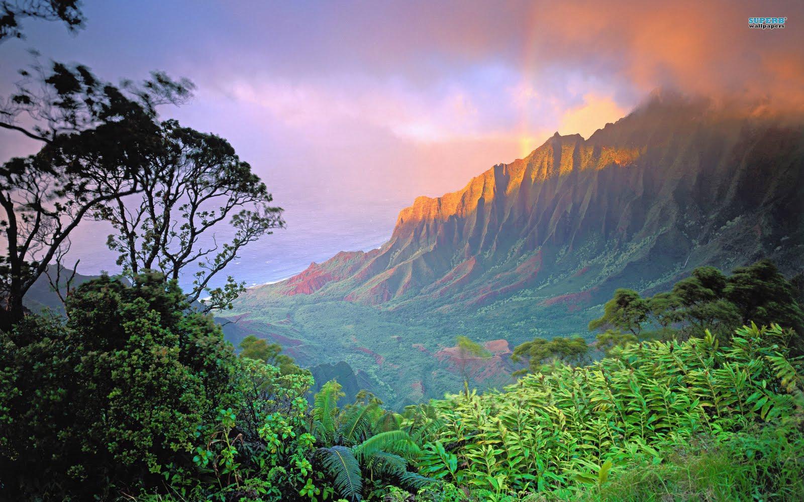 http://2.bp.blogspot.com/-bMhRAyOtkWs/TcwSu750zPI/AAAAAAAANNw/oYToNtc9pE8/s1600/hawaii-1851-1920x1200.jpg