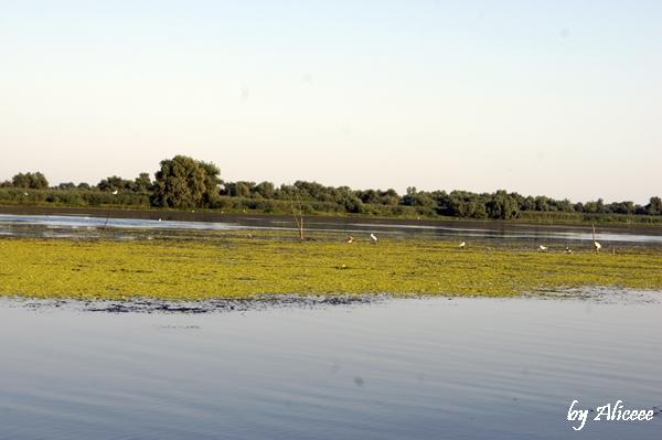 excursie-delta-dunarii-canale-vacanta