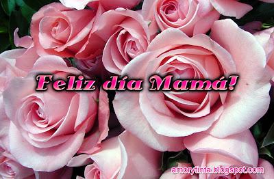 rosas rosadas para el dia de la madre
