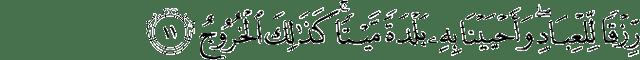 Surat Qaaf ayat 11