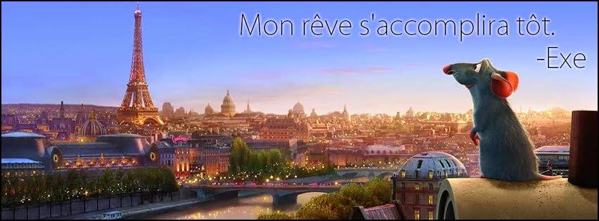 365 días en Francia
