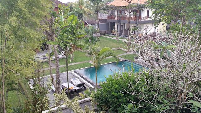 Agradables vistas desde nuestro hotel en Ubud (Bali)