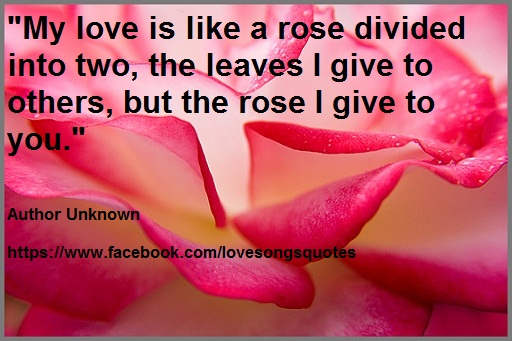 Love Quotes For Him With Roses : Rose Love Quotes. QuotesGram