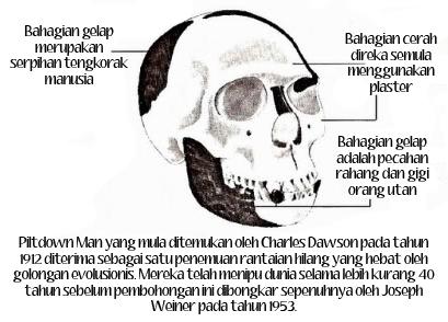 Piltdown Man yang mula ditemukan oleh Charles Dawson pada tahun 1912 diterima sebagai satu penemuan 'rantaian hilang' yang hebat oleh golongan evolusionis. Mereka telah menipu dunia selama lebih kurang 40 tahun sebelum pembohongan ini dibongkar sepenuhnya oleh Joseph Weiner pada tahun 1953.