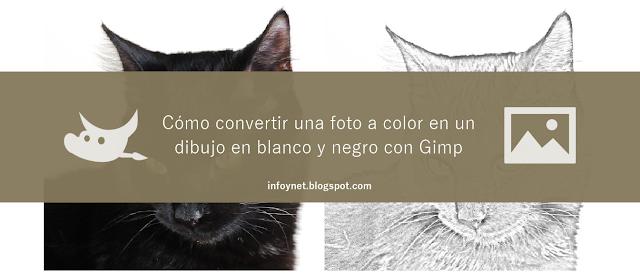 Cómo convertir una foto a color en un dibujo en blanco y negro con Gimp