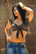 Sakshi chowdary hot photos-thumbnail-11