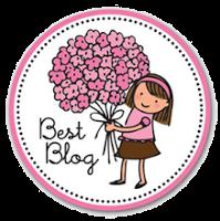 Premio : BEST BLOG