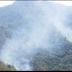 Estados/ Combaten Incendio forestal en Tamaulipas