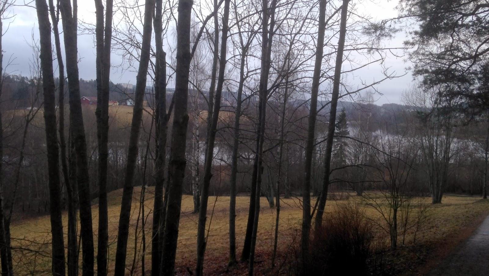 Utsikten fra nord øst siden er bedre på vinteren når løvet er borte fra tærne
