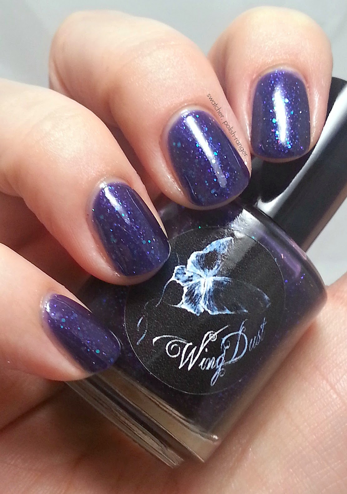 WingDust Collections Night Fury swatch