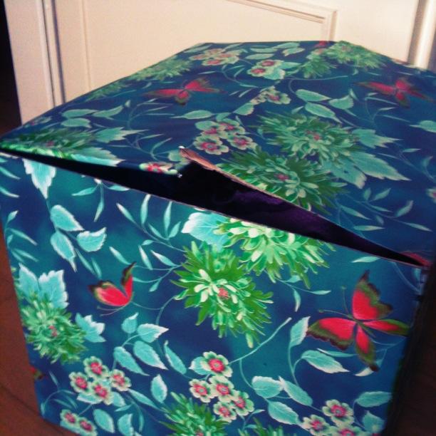 Fräulein Bergers neue Kiste