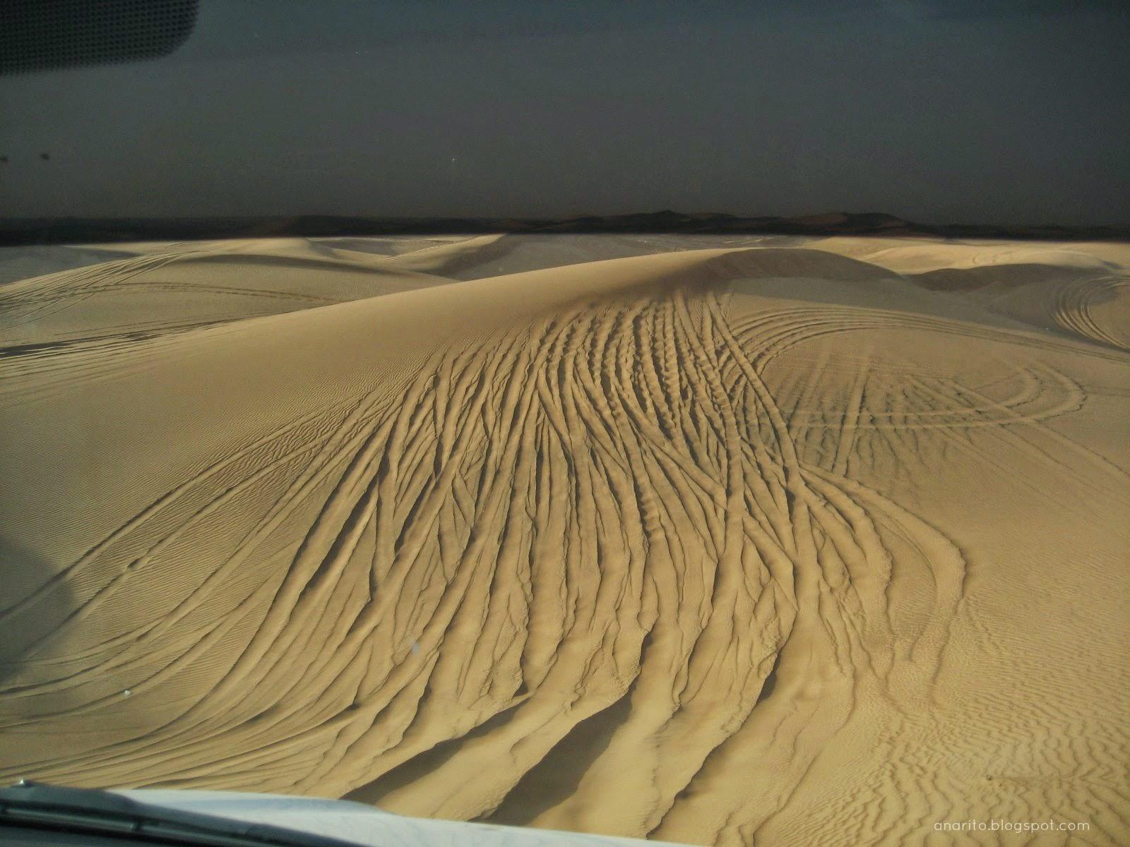 Deserto das Arábias, Dubai