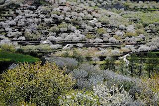El Valle del Jerte entre las 10 mejores zonas de naturaleza de España