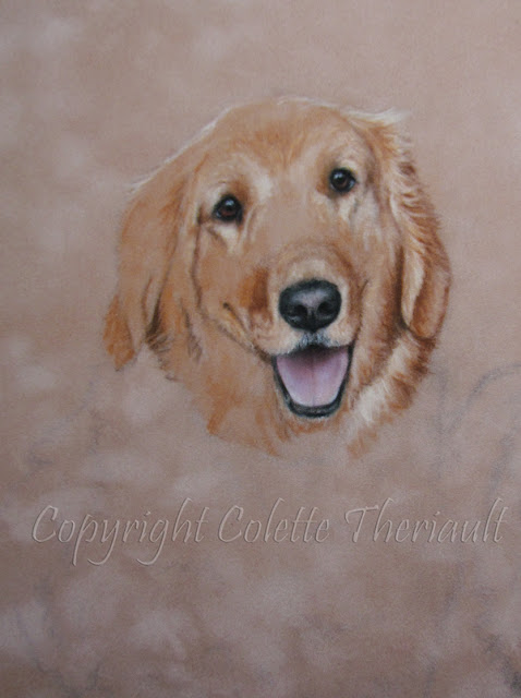 golden retriever painting in progress by Colette Theriault