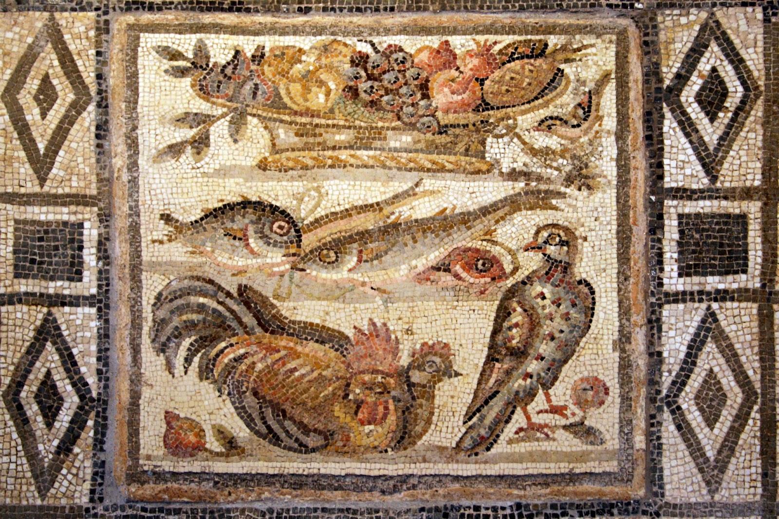 Abemvs incena la higiene bucal en la antigua roma for Cucina romana antica