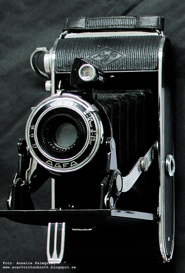 gammal kamera, loppis, loppisfynd, fynd, svart, inredning, inredningsblogg, bloggar, annelies design