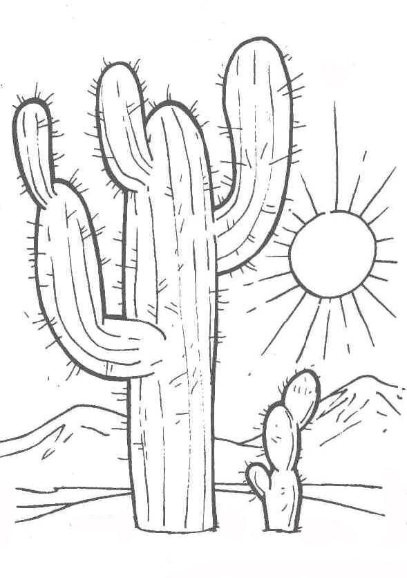 Universul copiilor imagini de colorat cactus for Cactus coloring page
