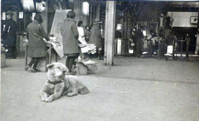 buongiornolink - Giappone, ha fatto piangere tutto il mondo spunta foto inedita del cane Hachiko