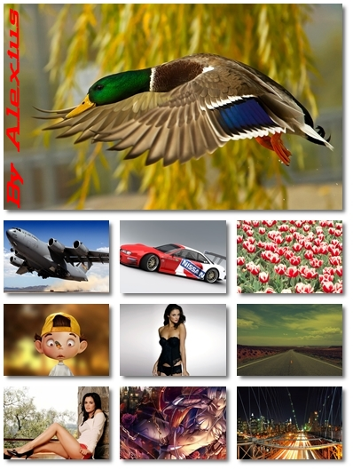 ]HQ Mixed Wallpapers Pack 81 by Alexius - JPG - 1920x1200
