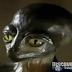 Documental.- El Troodon: ¿qué hubiera pasado si no se hubiera extinguido?