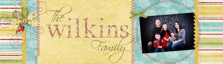 Wilkins Family Blog