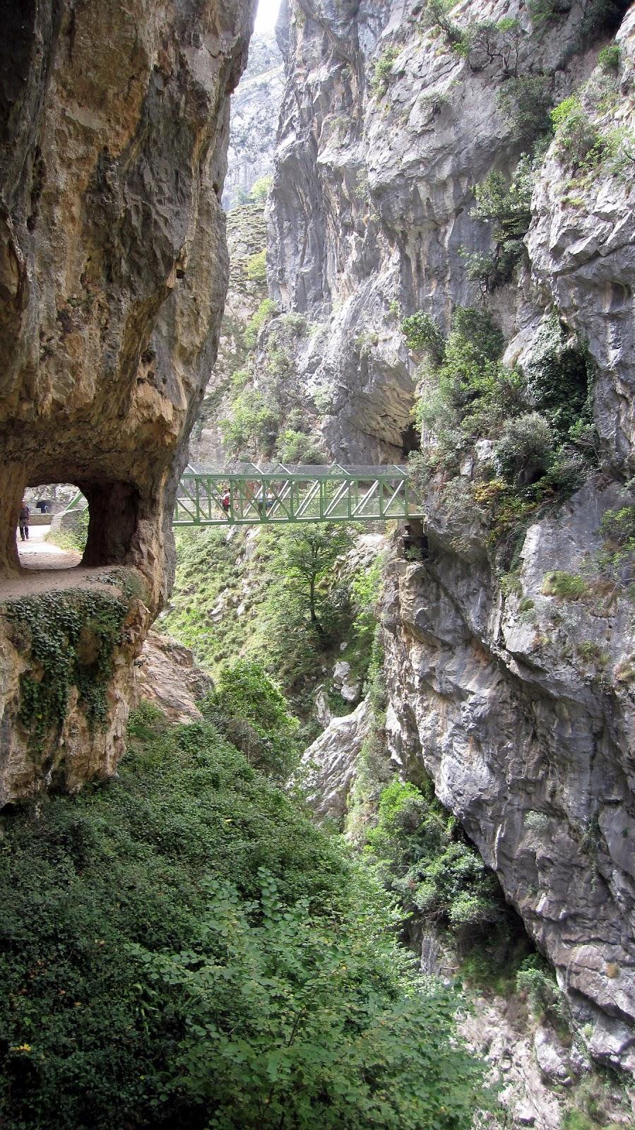 Pont Rebecos. El Cares