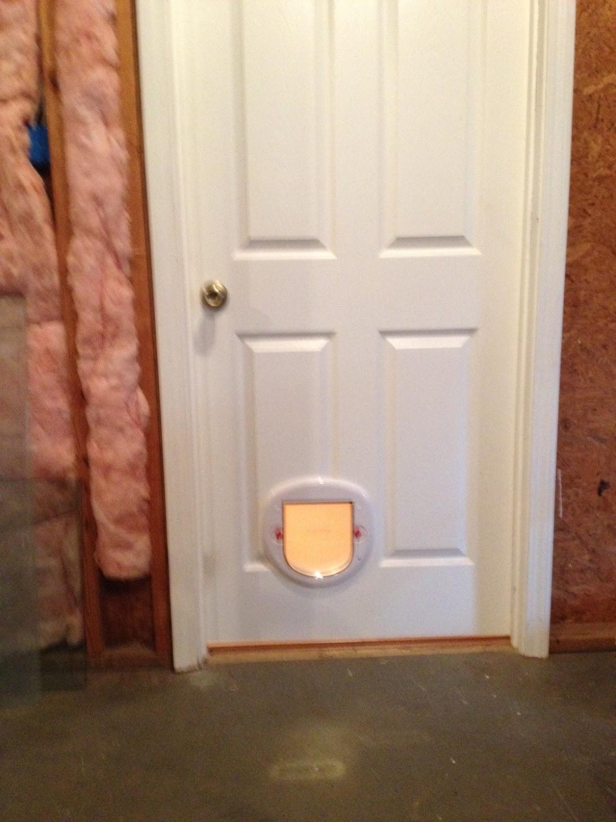 Between The Rafters Pet Door Install