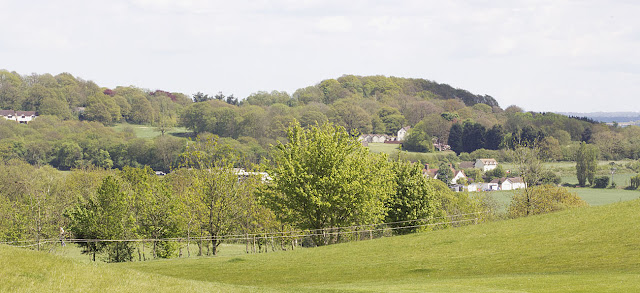 View of The Ship at Puddledock over the golf course from Joyden's Wood, 12 May 2012.