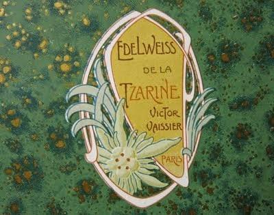 Edelweiss de la Tzarine