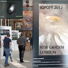 Exhibition 2012, London
