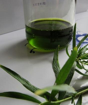 hjemmelavet olie med krydderurter