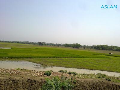 picture of Faridpur