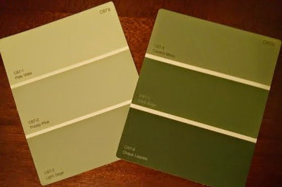 Renewing the new pale moss green paint by olympic for Dark sage green paint color