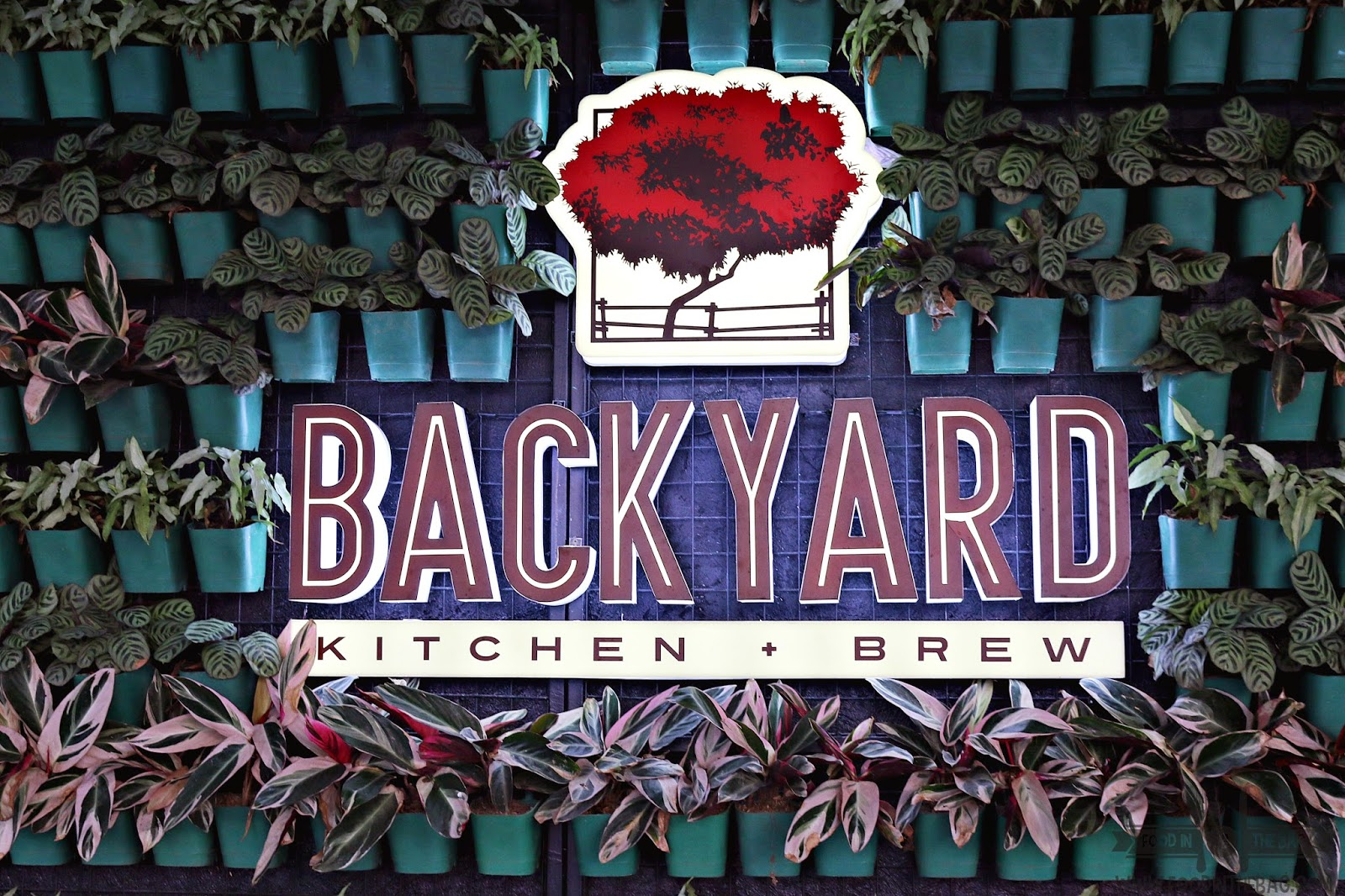 backyard kitchen and brew in up town center food in the bag