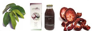 Obat kanker serviks herbal alami yang manjur